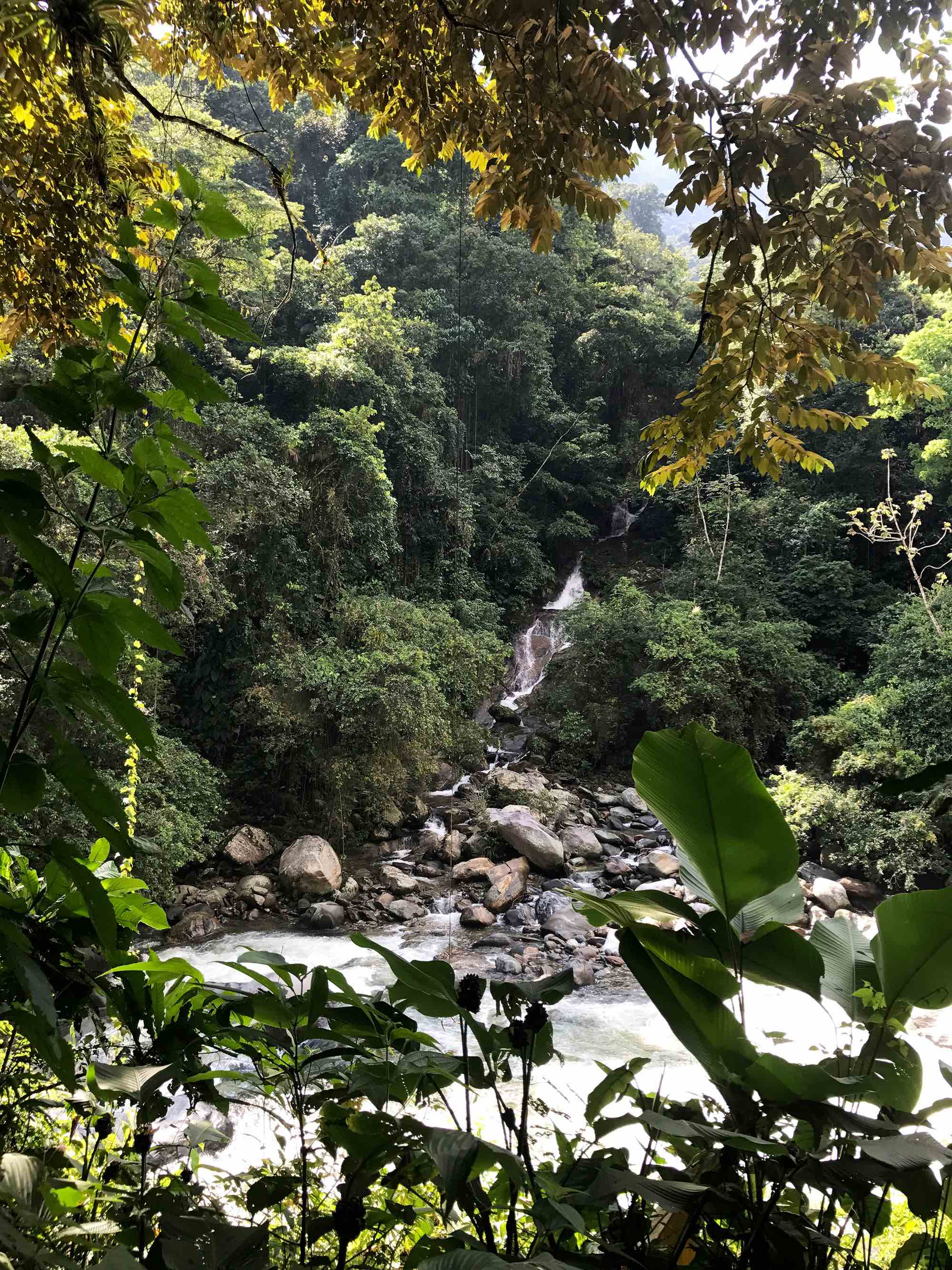 Waterfall, Lost City, Colombia