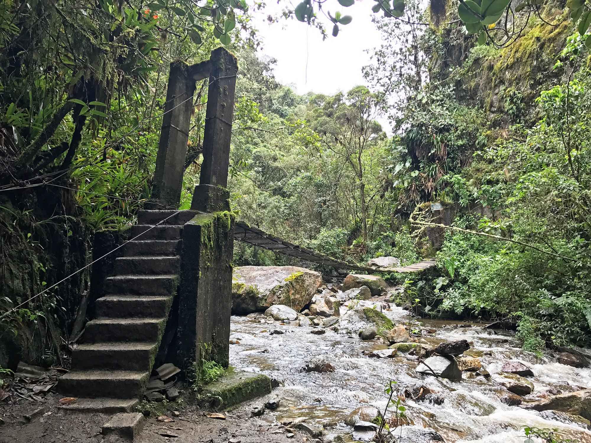 Bridge | Hiking Cocora Valley, Colombia
