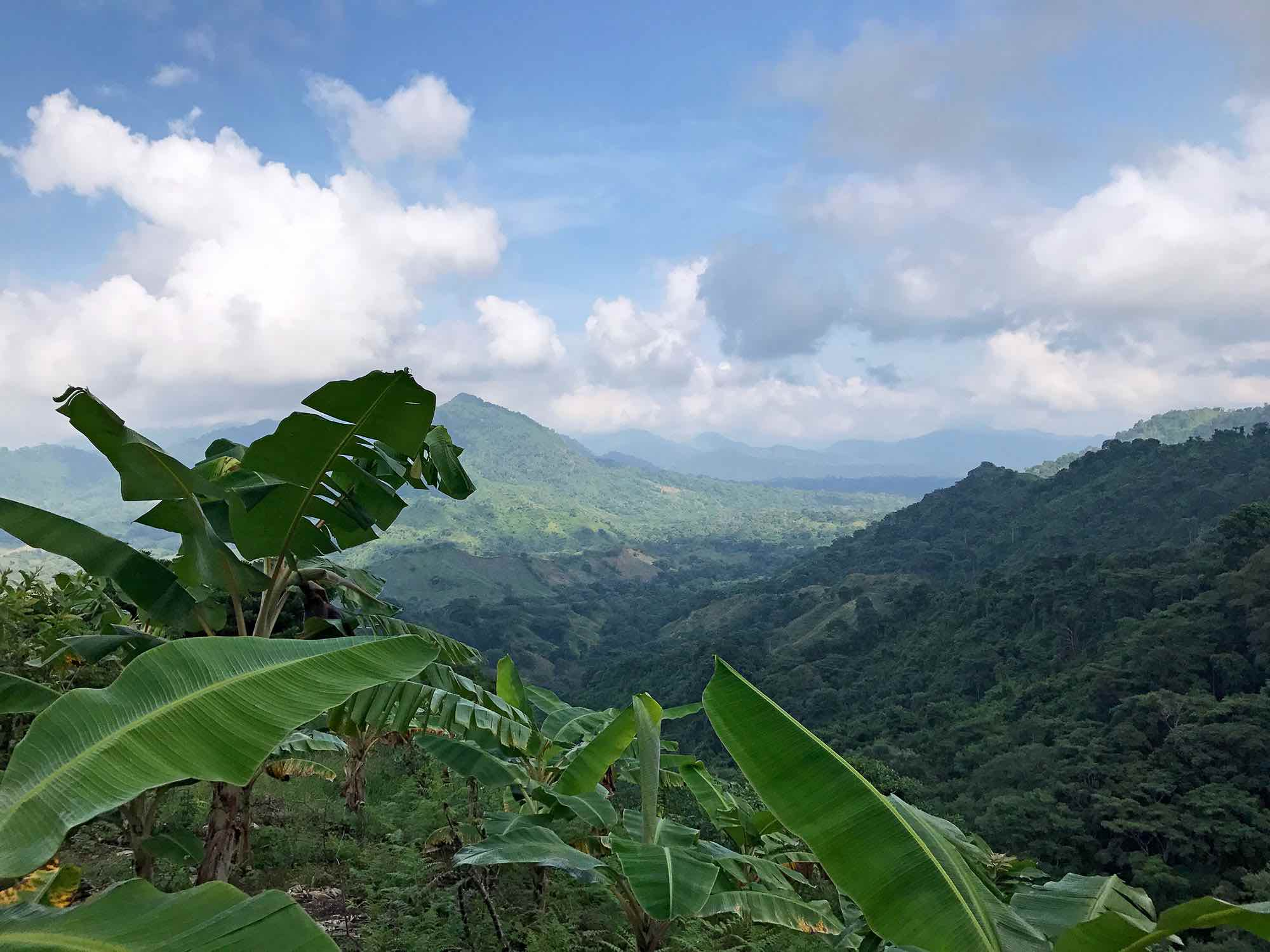 hiking to the Lost City, Colombia