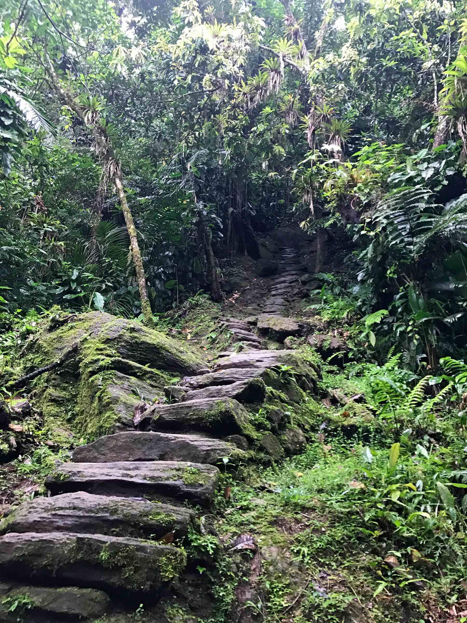 Lost City Colombia trek