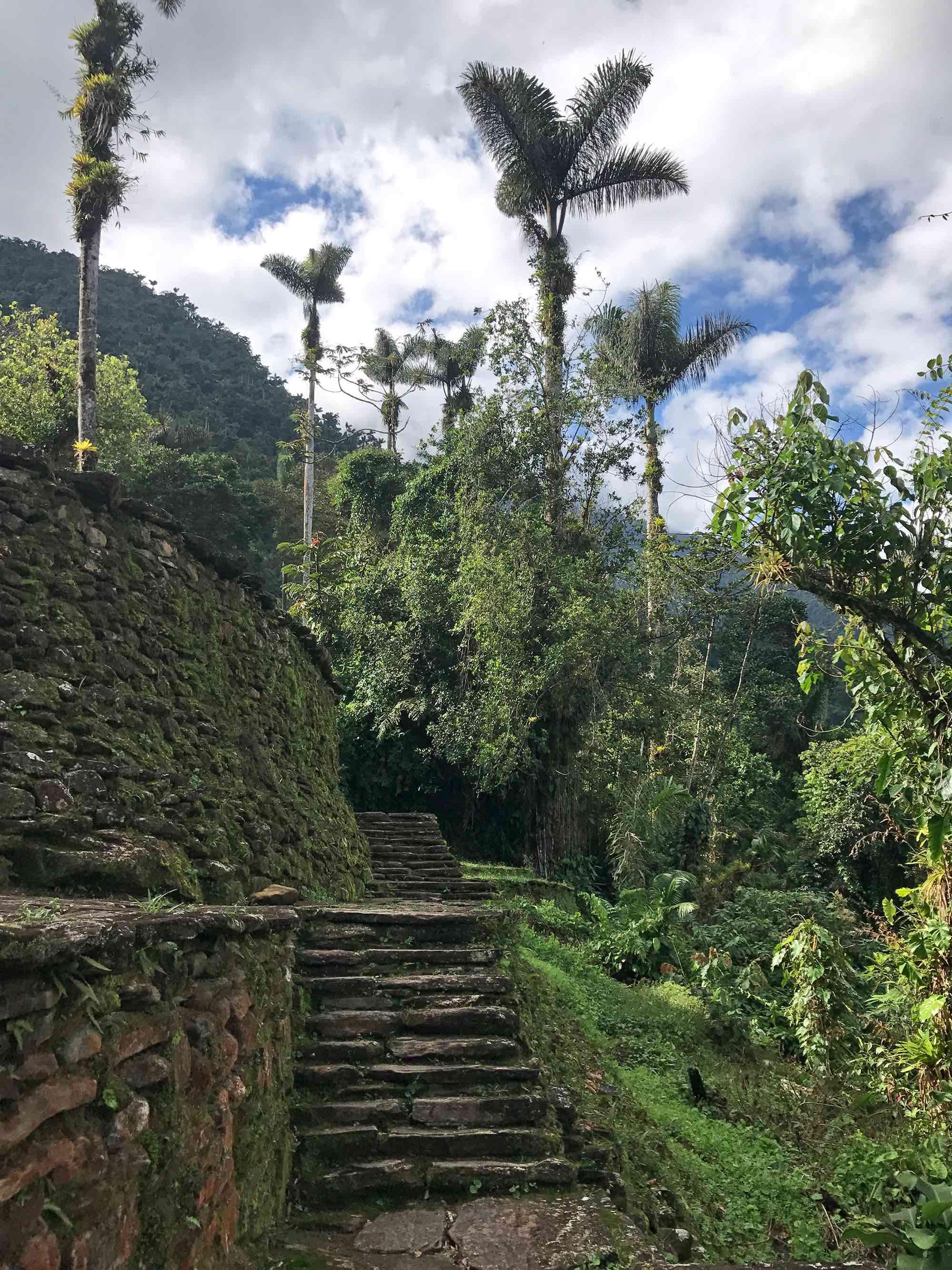 Lost-City-trek-Colombia-site.jpg