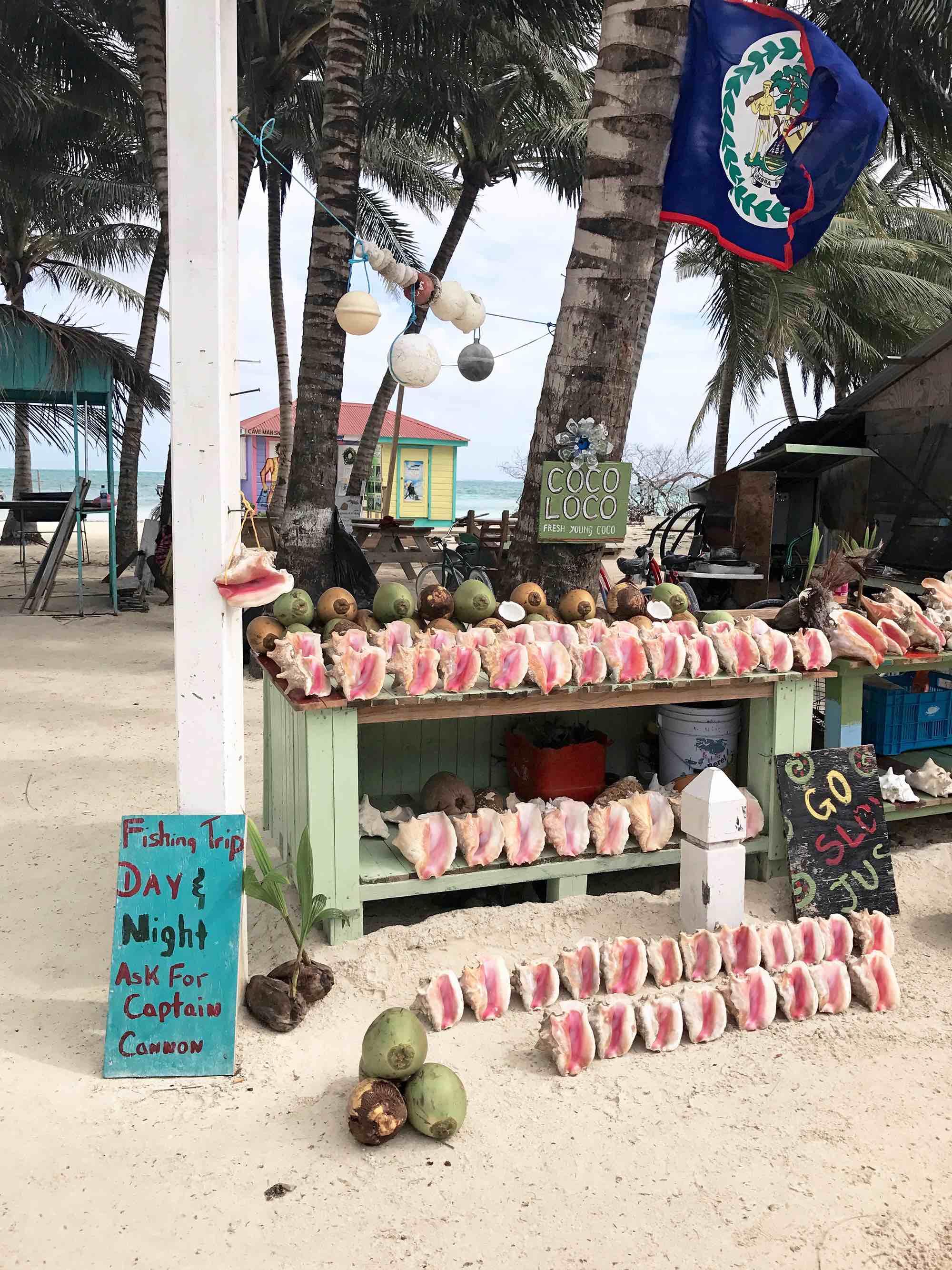 Caye Caulker Belize go slow motto