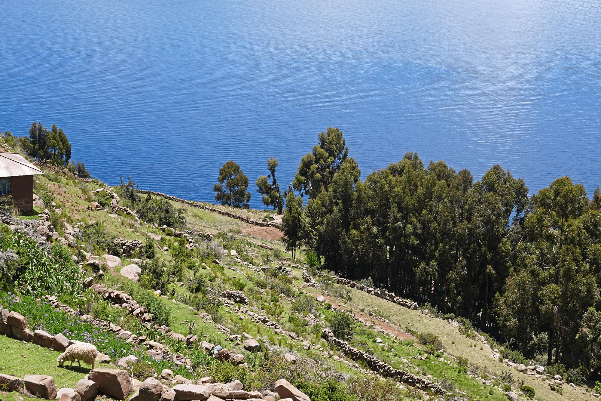 Taquile island | Lake Titicaca, Peru