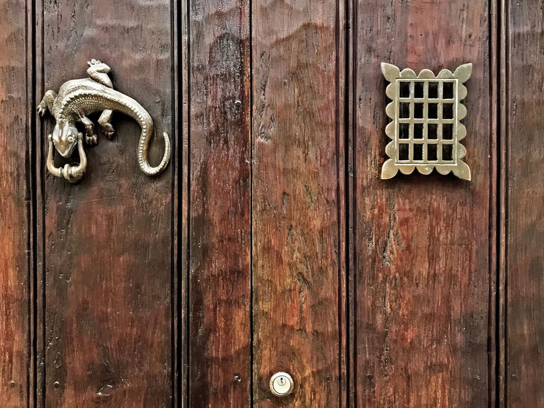 Gold lizard door knocker | Doors and Door Knockers of Cartagena, Colombia | pictures of Cartagena, Colombia