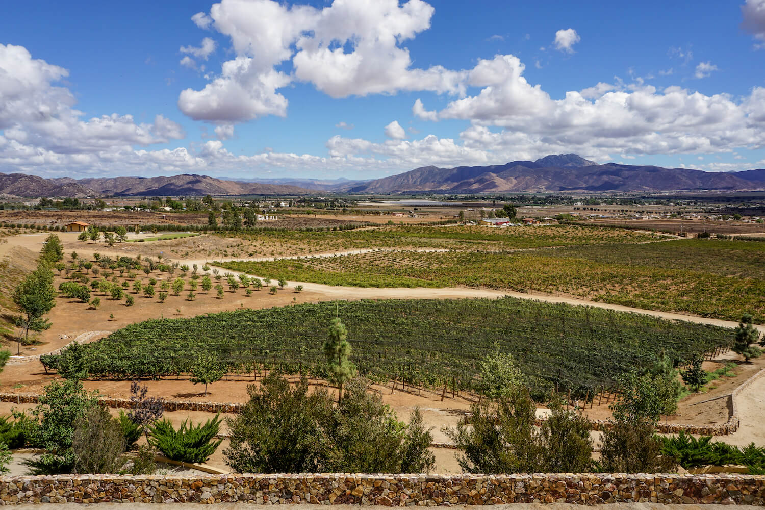 Views from Las Nubes Winery, Valle de Guadalupe, Mexico
