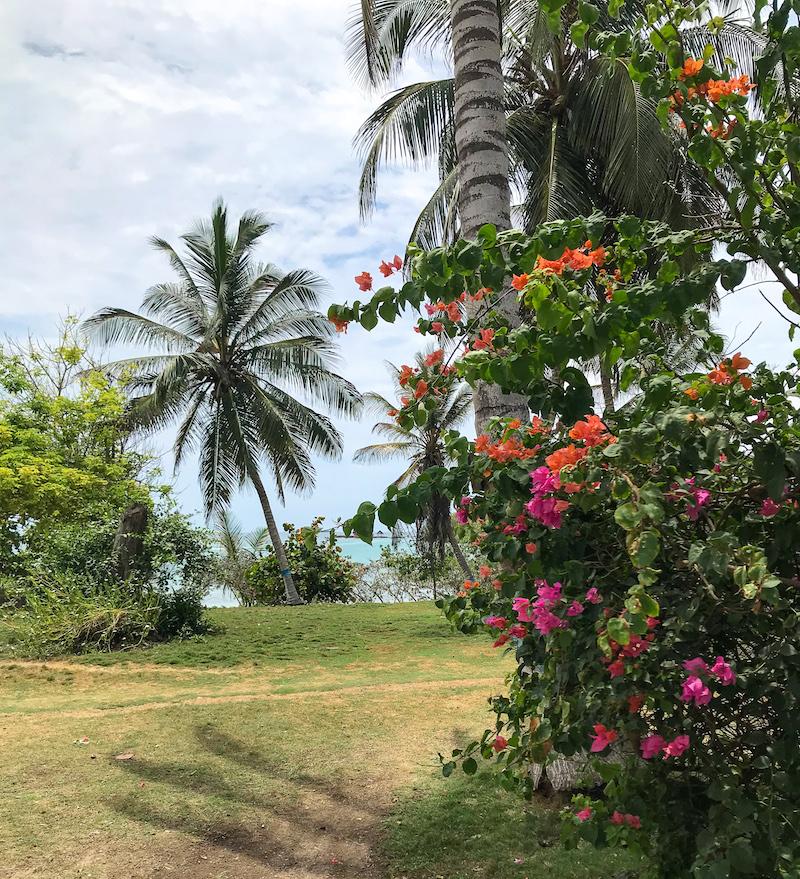 beach isla grande colombia