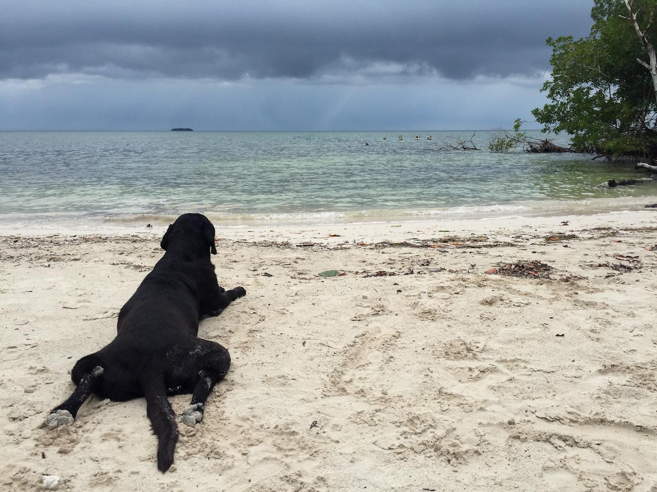 private beach isla grande colombia
