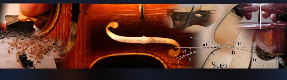 Violin ~ Viola ~ Cello ~ Bass ~ Bows