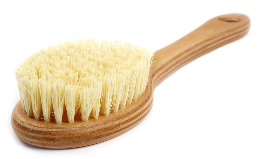 long handled proper dry brush