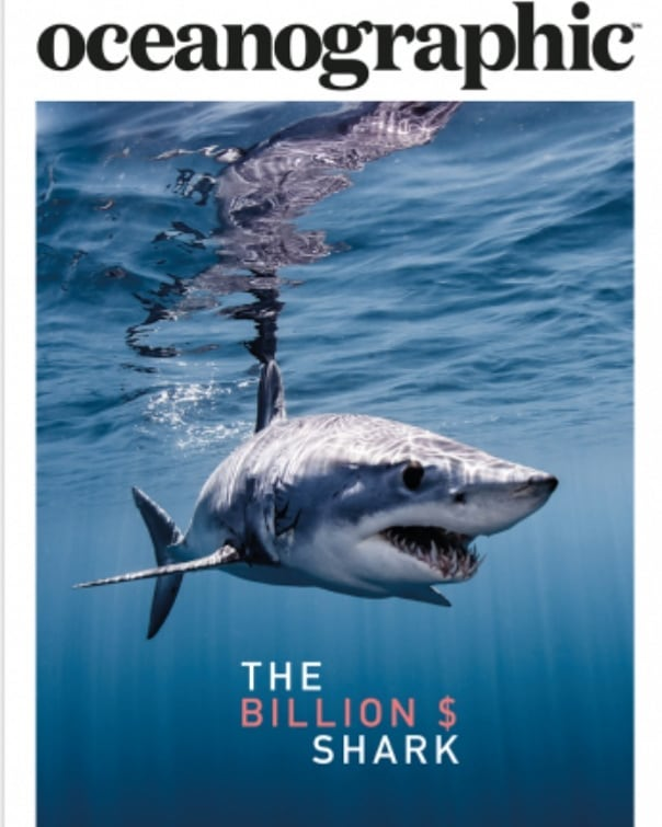 If you haven't noticed, there's a massive awareness push for Mako sharks at present. Why?  They are endangered. We can help them. Click my instagram bio for a link to sign for support to get them protection via @cites  You want the facts, the figures and what it feels like to swim with them, check out @oceanographic_mag for the full run down from when @shawnheinrichs came on a crusade to New Zealand, to capture imagery of these most incredible animals. Shawn had never seen a live Mako, only thousands of dead ones. So myself and @amberandfriendsphotography took him into there global strong hold and holy mackerel were we treated. By combining stimulating visual imagery with science, you can emotionally engage, empathetically involve and ensure the evolutionary value of an apex predator that controls a $42billion dollar tuna fishery.  Please like, comment, share and support.  This mission was possible thanks to @bluespherefoundation @sealegacy @vulcaninc @lonelywhale @shawnheinrichs @trav_boyd and many others  Images @shawnheinrichs