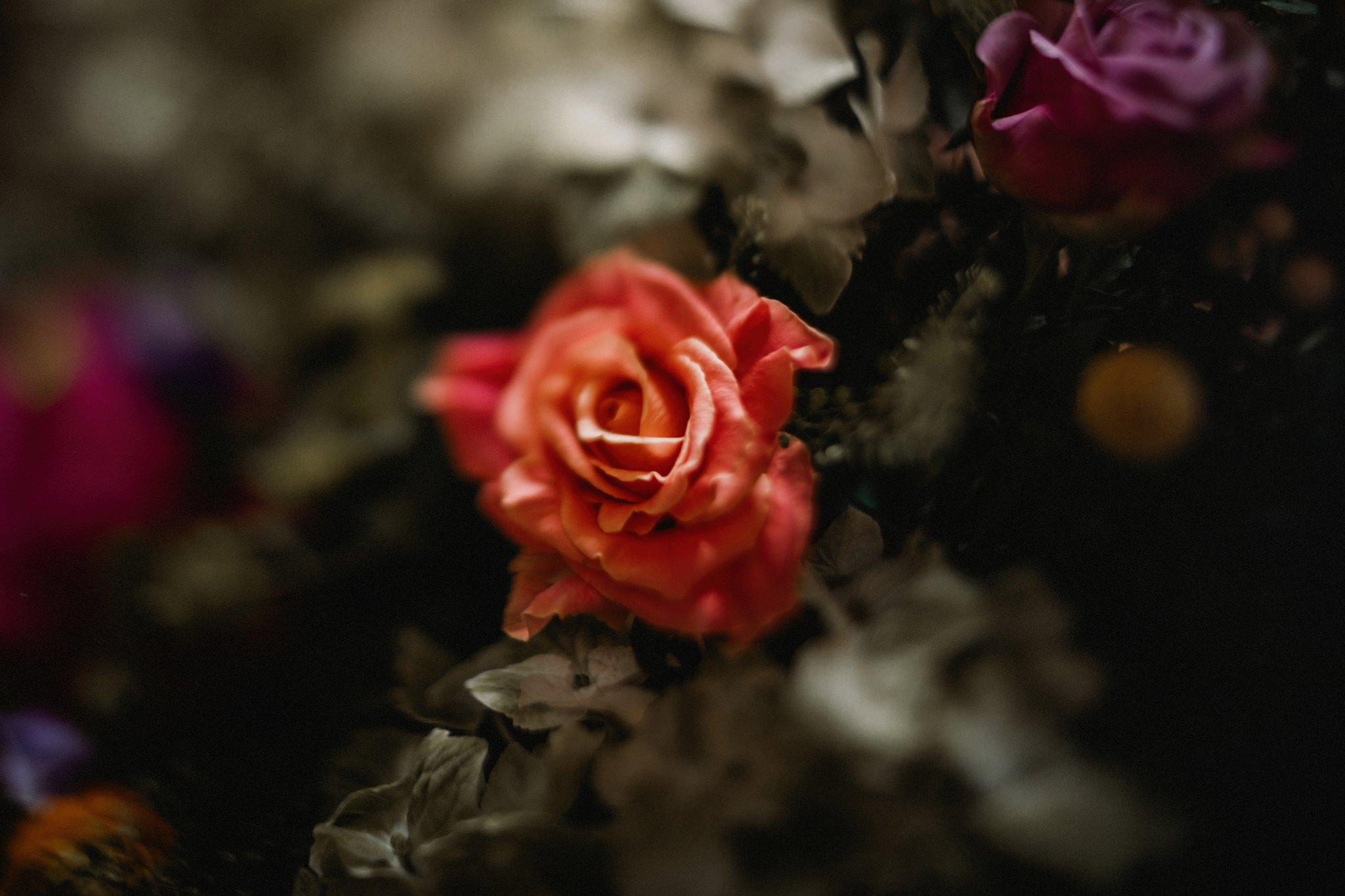 Tre-Ysgawen Wedding Photography-2807-Love Luella.jpg
