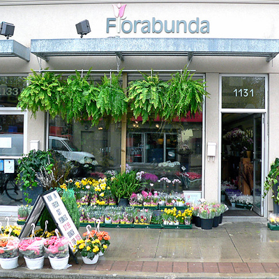 Monday Must Flowers Florabunda.jpg