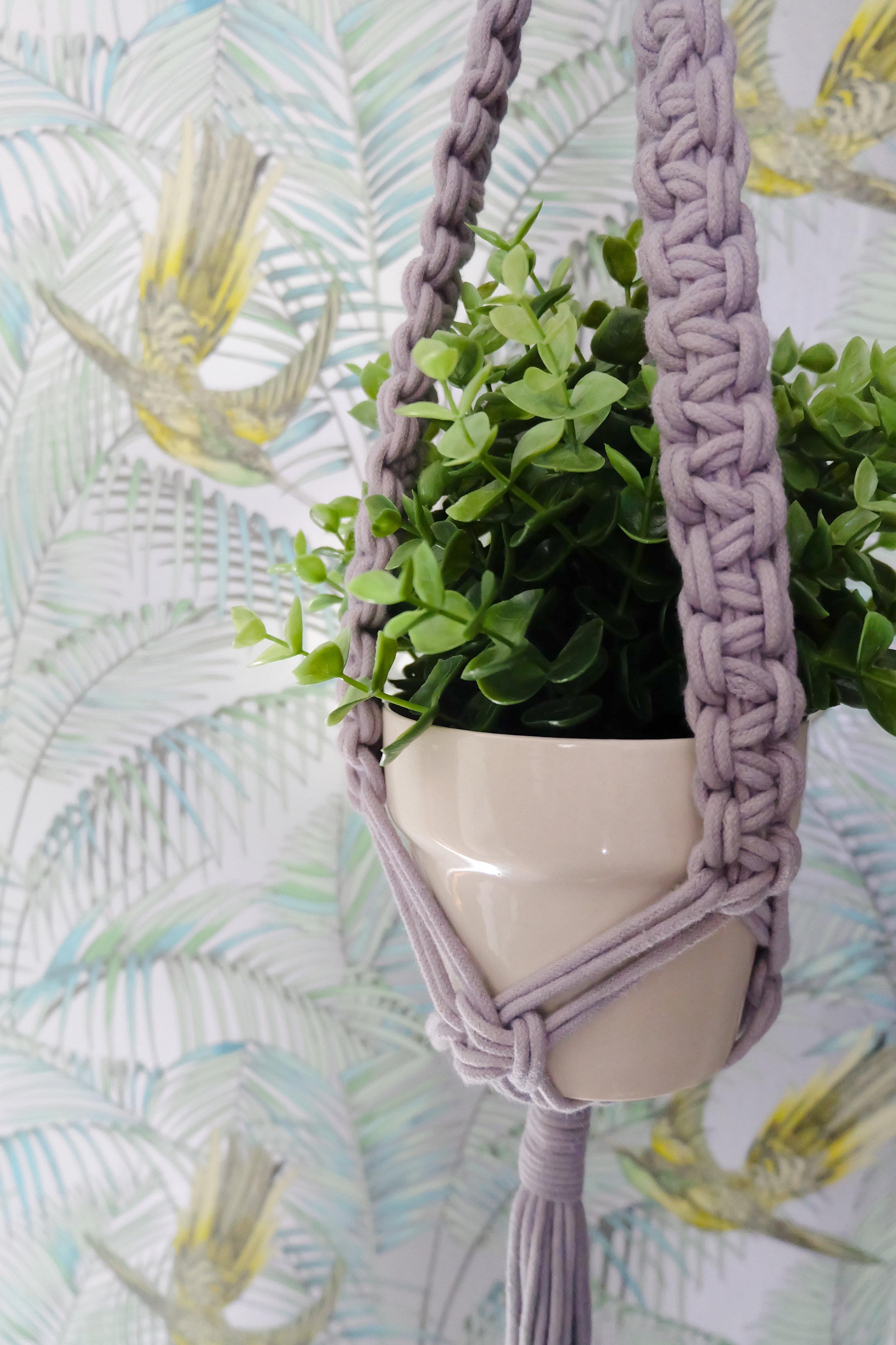 Macamre plant holder