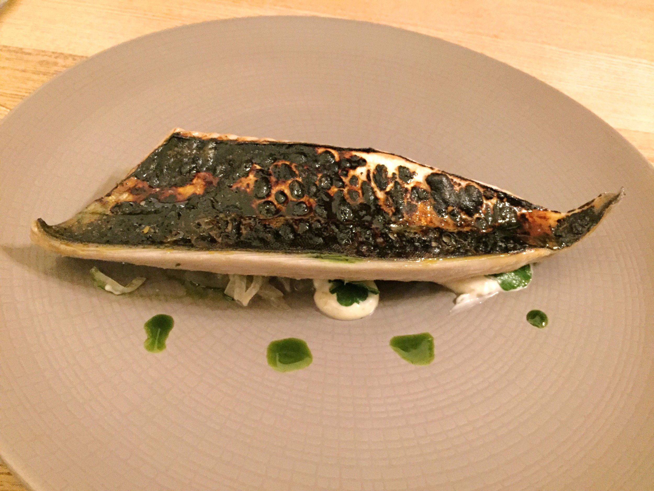 Mackerel starter