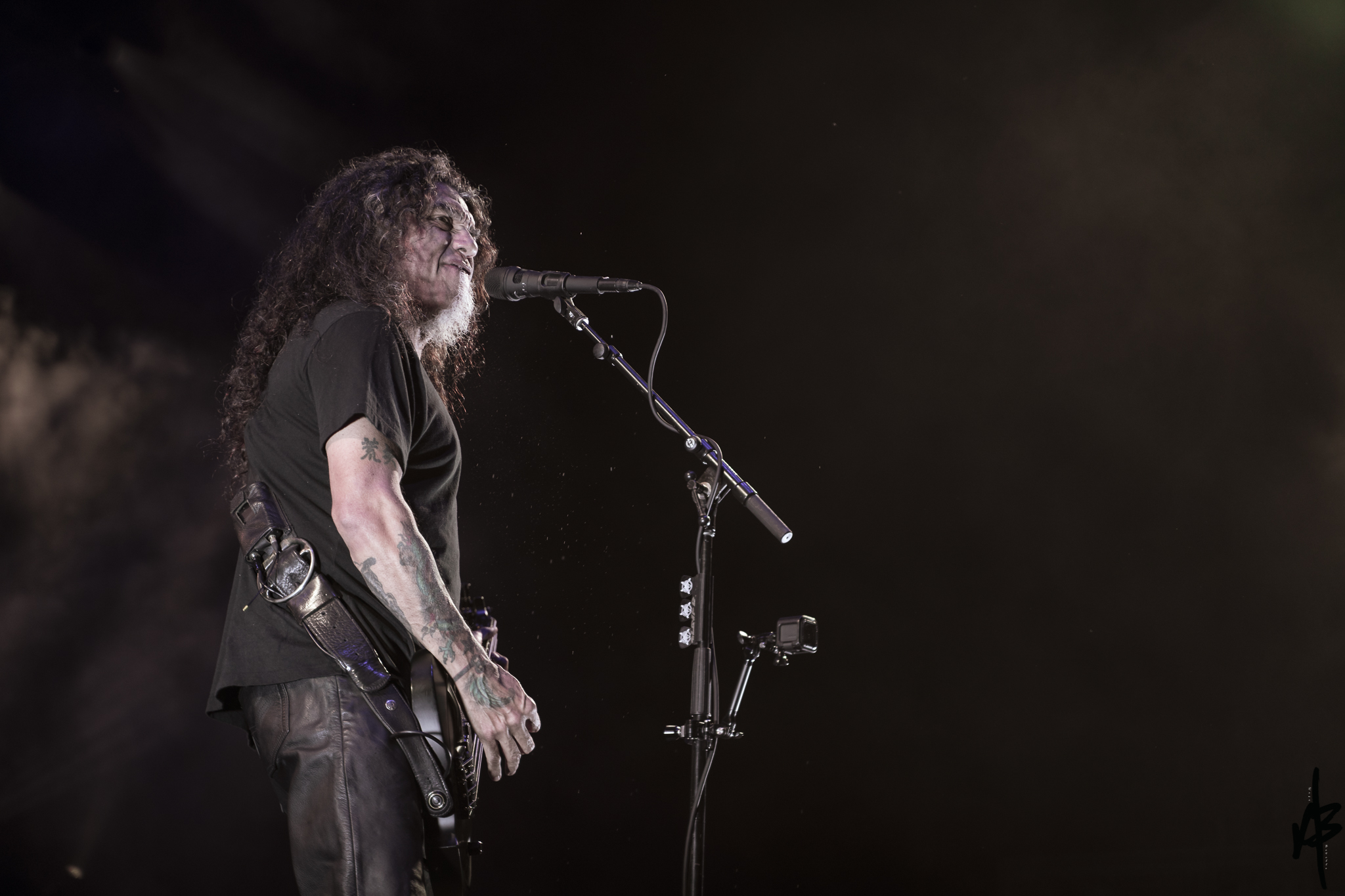 Slayer MAY 7 2019 RRB-20.jpg