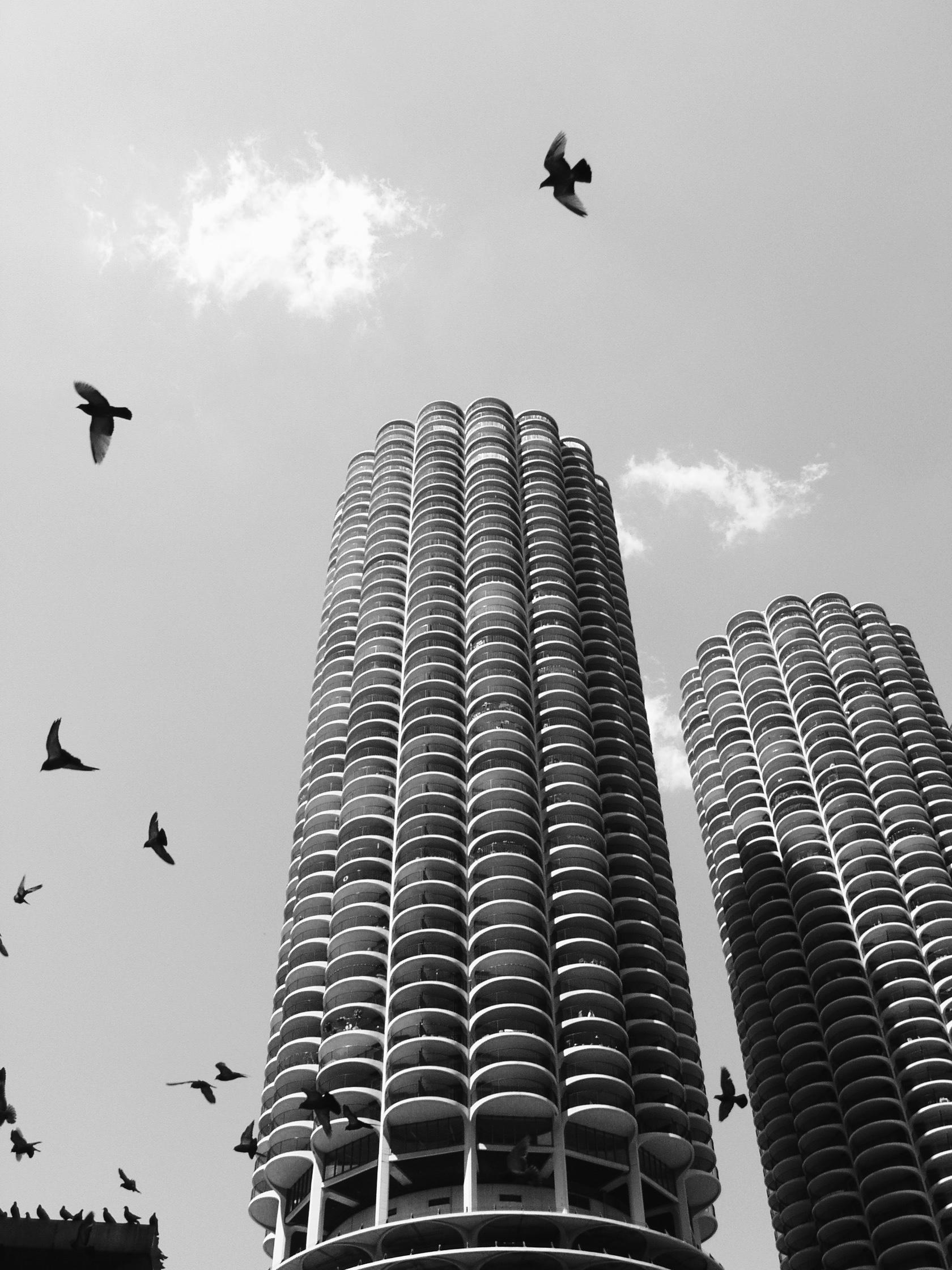 Chicago - 8.jpg