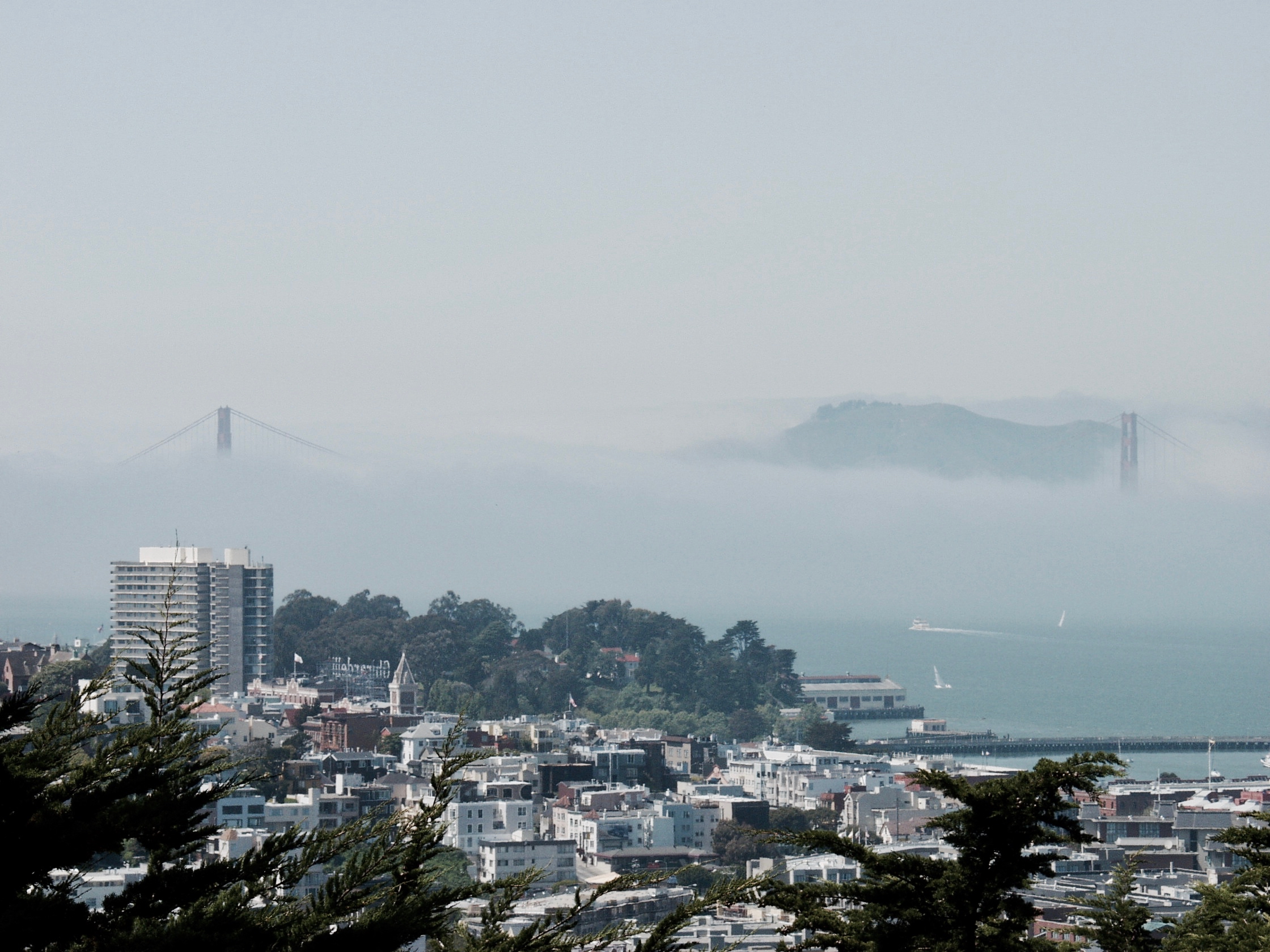 San Francisco - 6.jpg