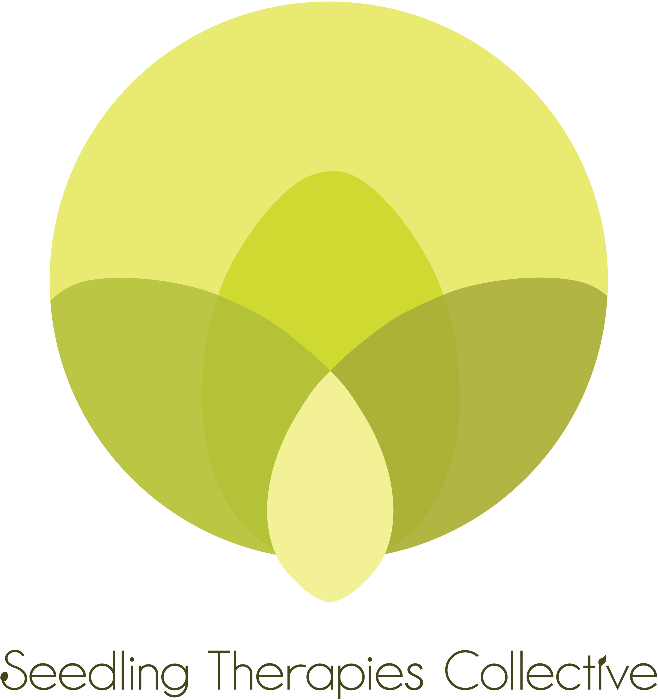 Seedling_Therapies_Logo_colour.png