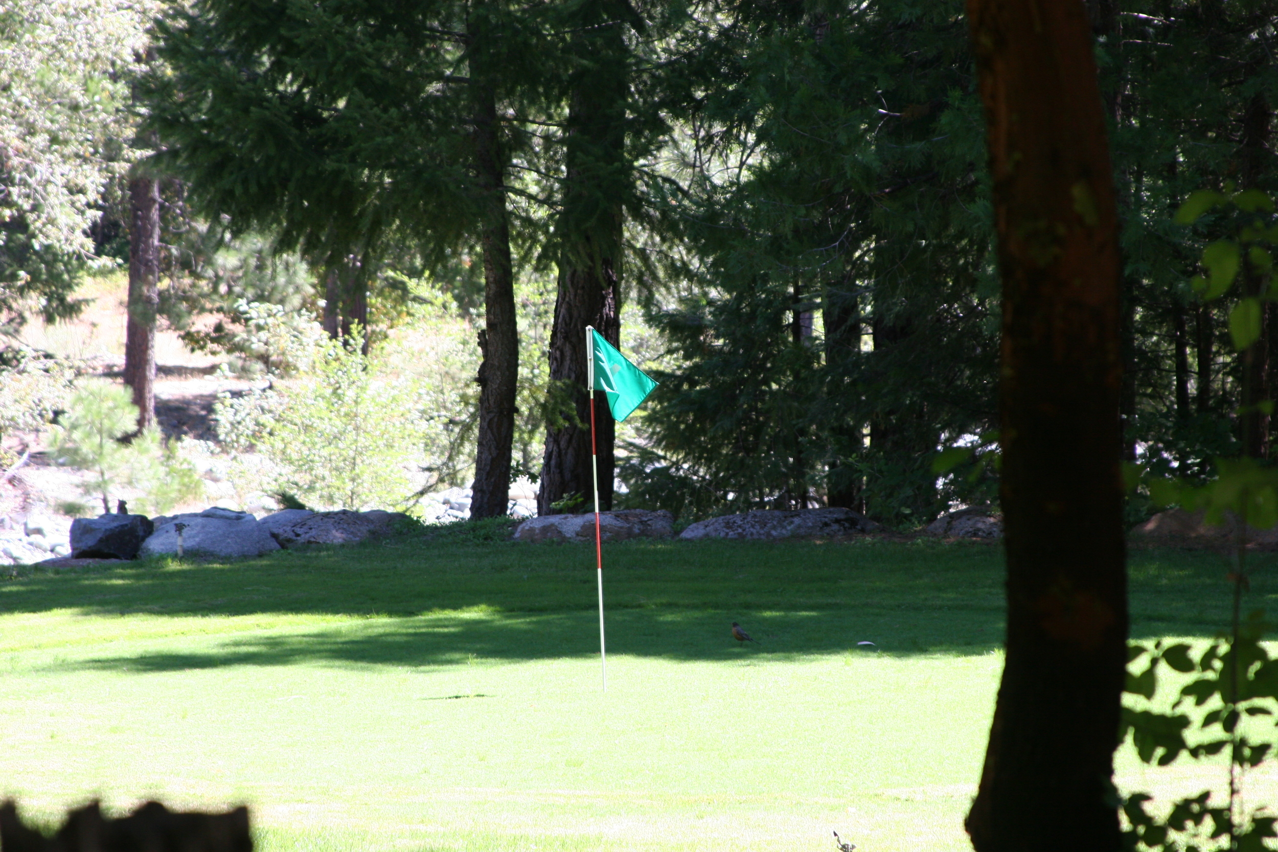 Golf Course Hole One