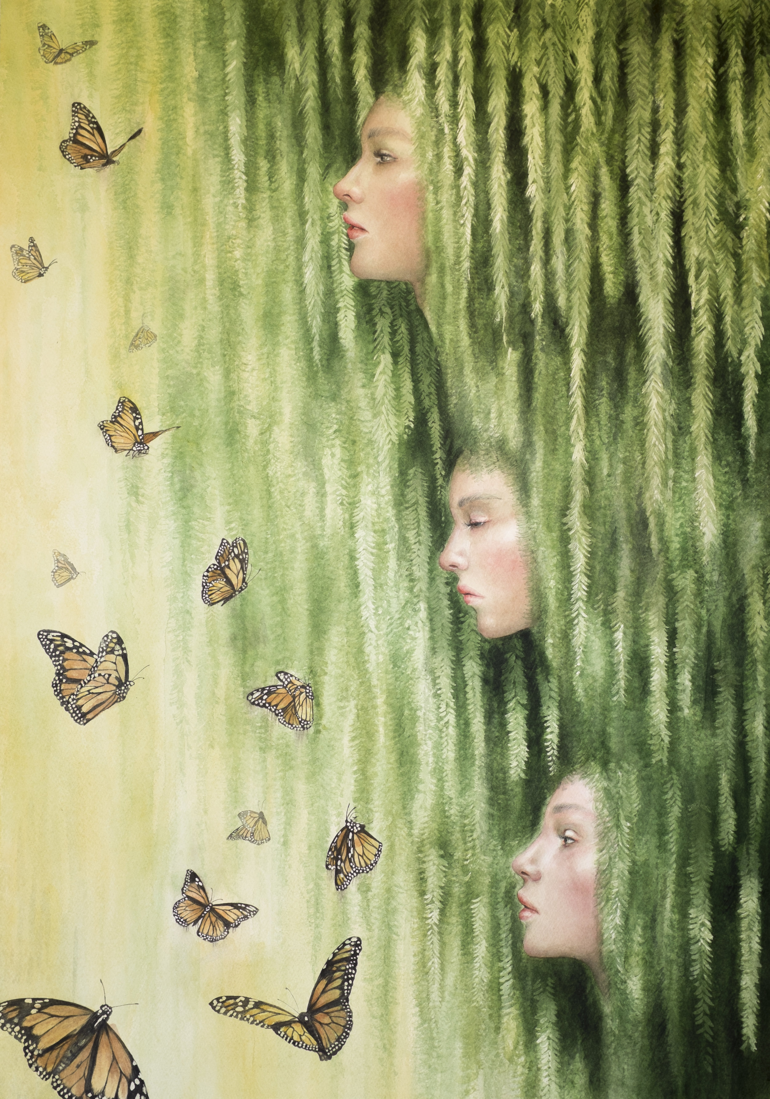 The 3 willow sisters