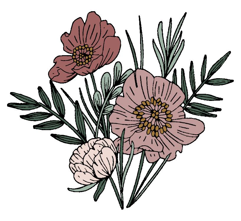 illustrations-03.png