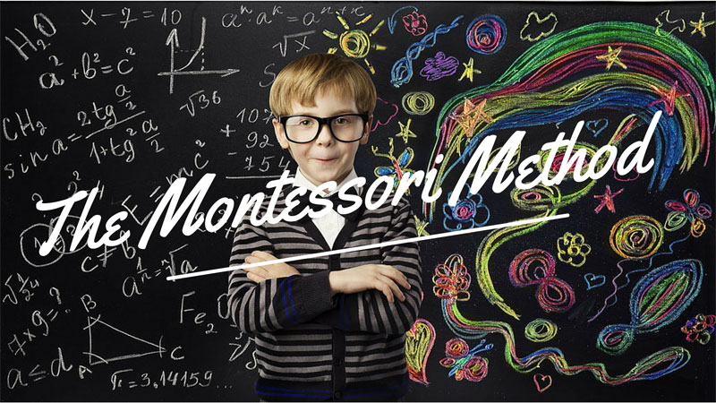 Click the image above to view an article regarding Montessori and the importance of lifelong learning.
