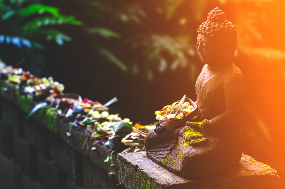 Budda Light a.jpg