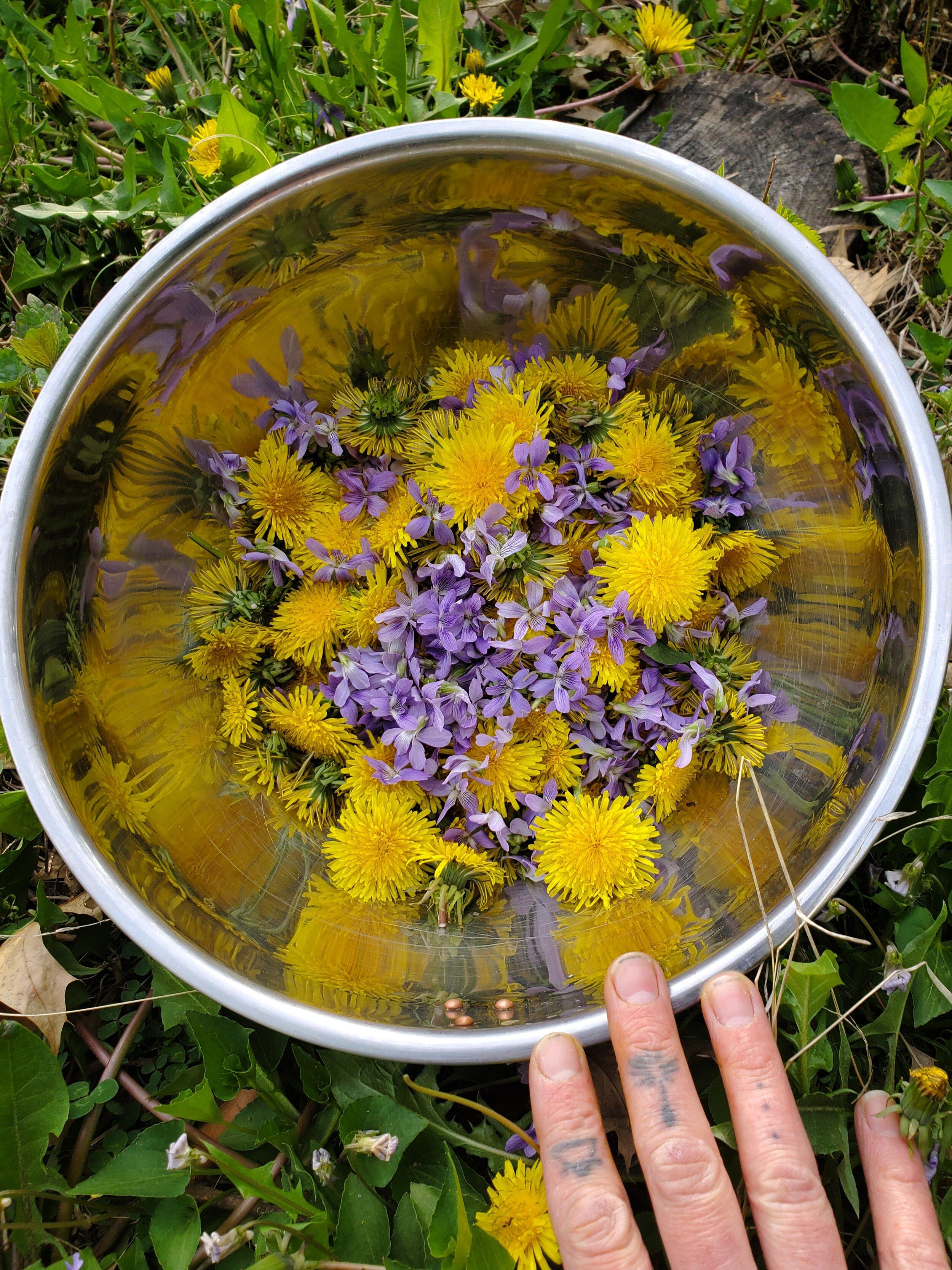 dandelionandvioletflowers.jpg