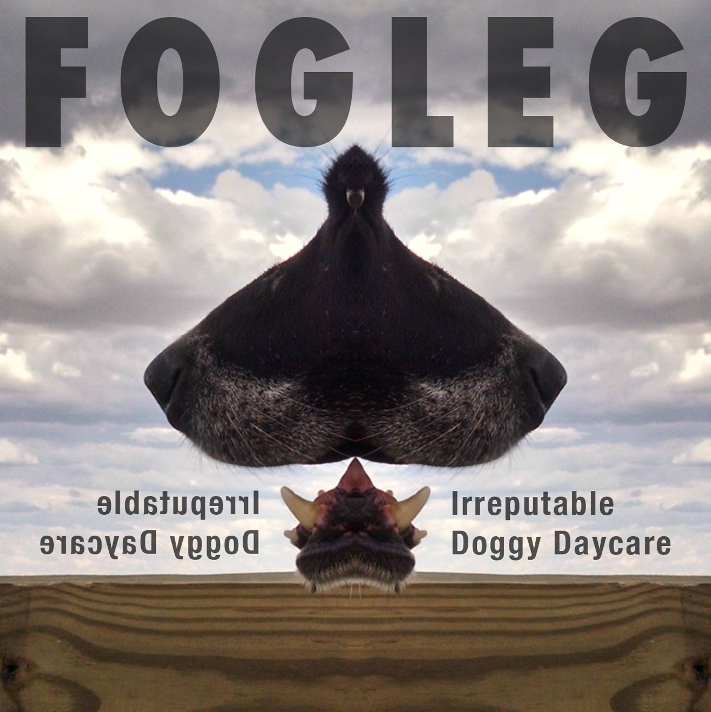 Fogleg_IDD_cover.jpg