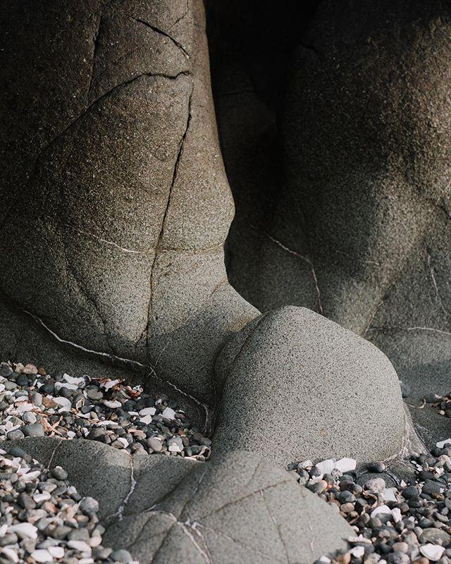 Happy hump day 🐫 #westcoast #porthardy #fortrupert #gonorthisland #lxcn #tribearchipelago #subjectlight