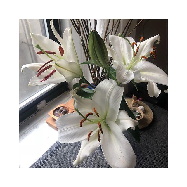 Feeling very in bloom 🌸🌼🌻