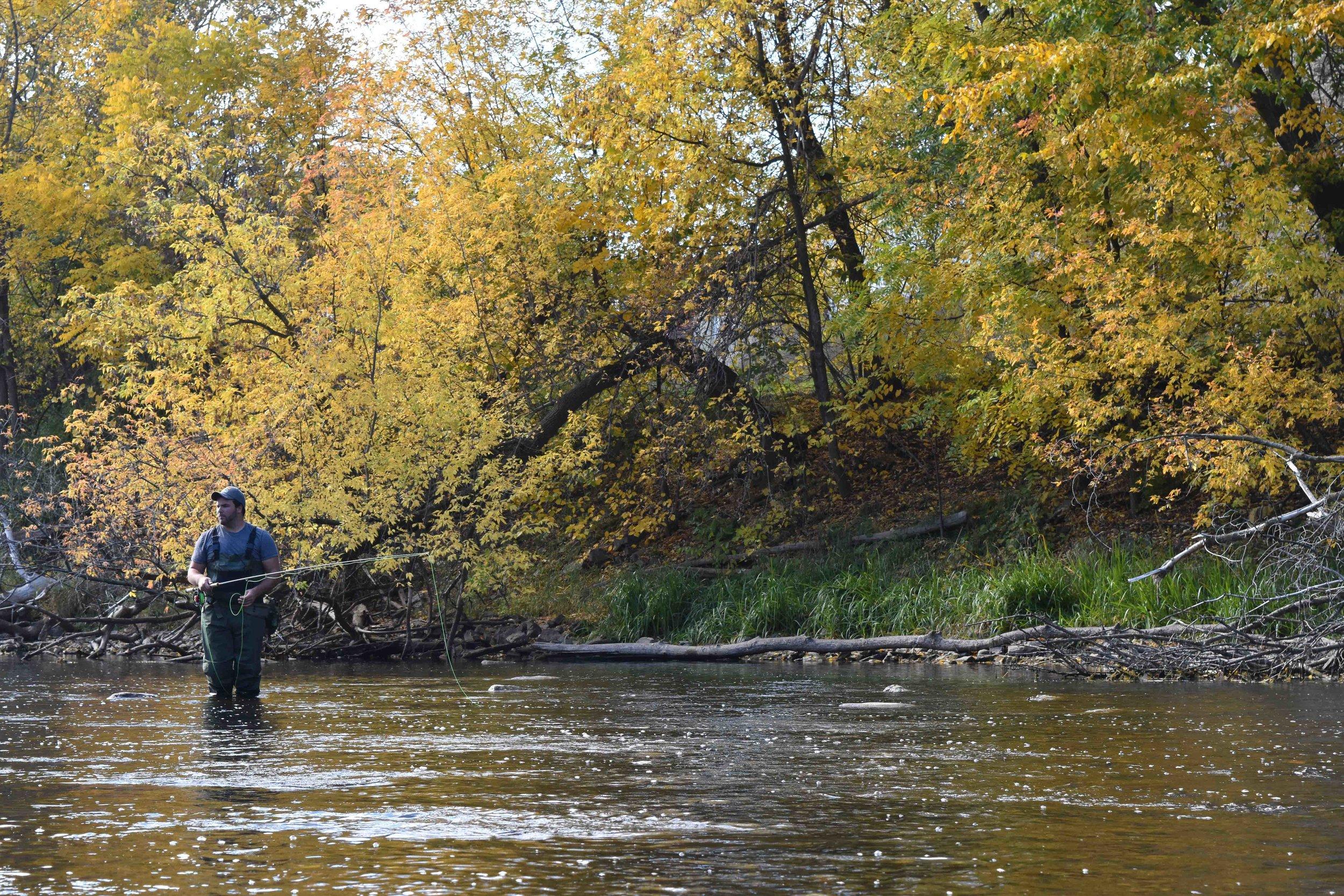 Napanee River, Ontario