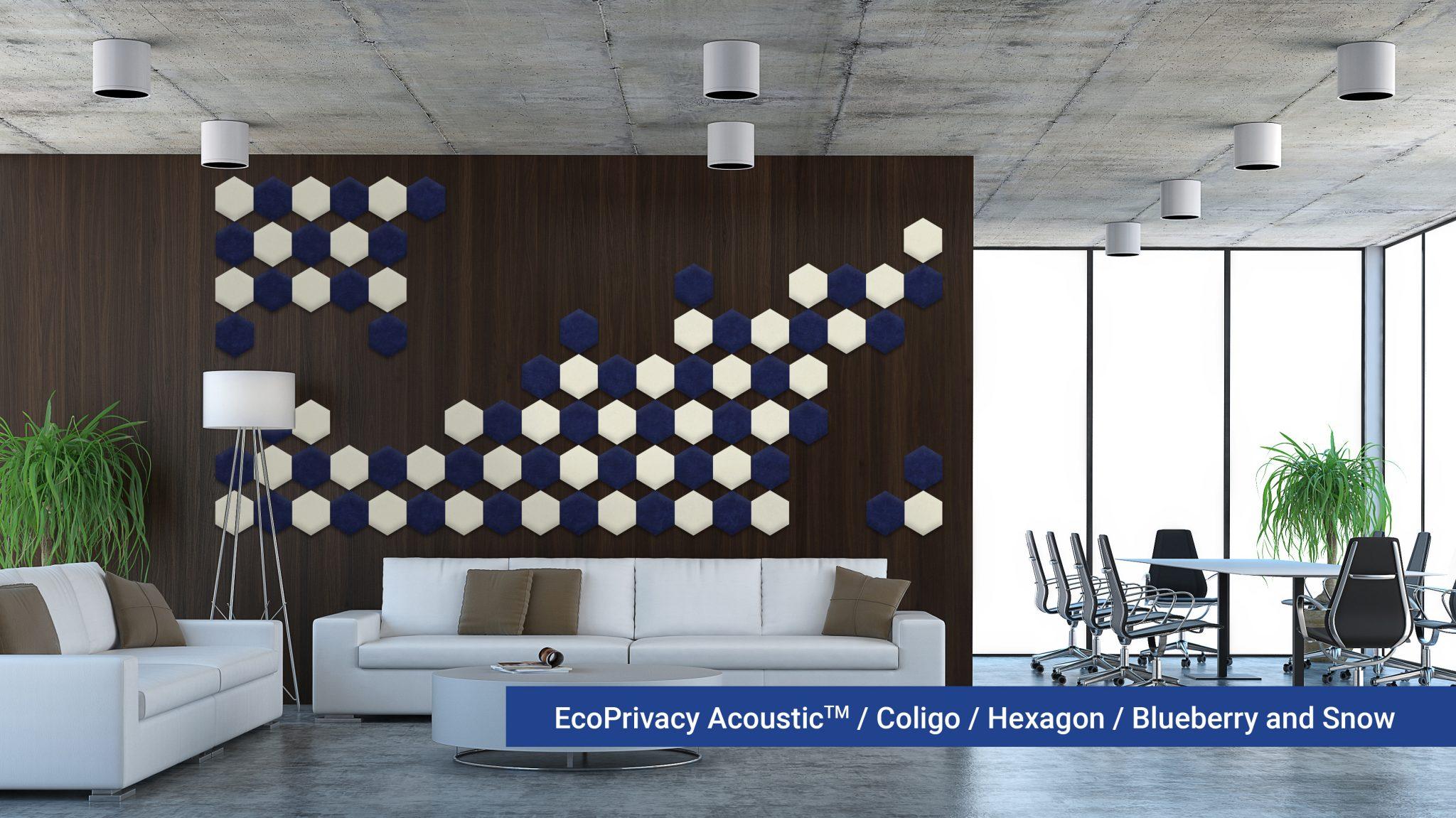 Coligo-Hexagon-Blueberry-01-Snow-20180925.jpg