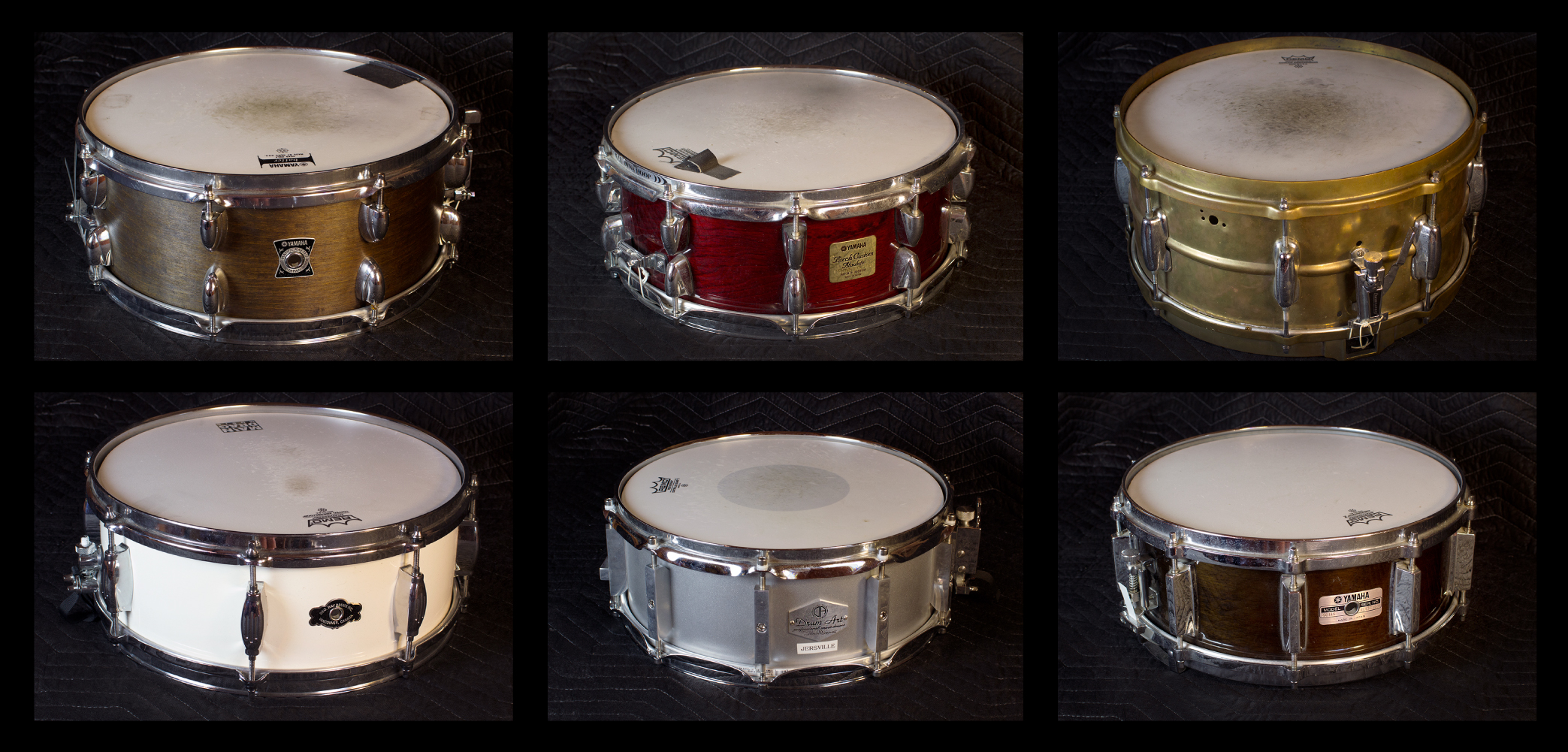 Snares -1.jpg