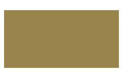 Dreamland Recording Studios Logo