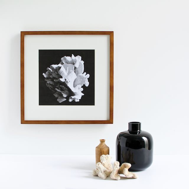 Black and white abstract photography art print