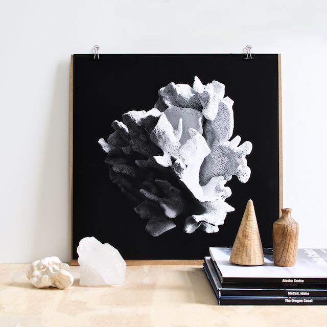 Black and white coral art print