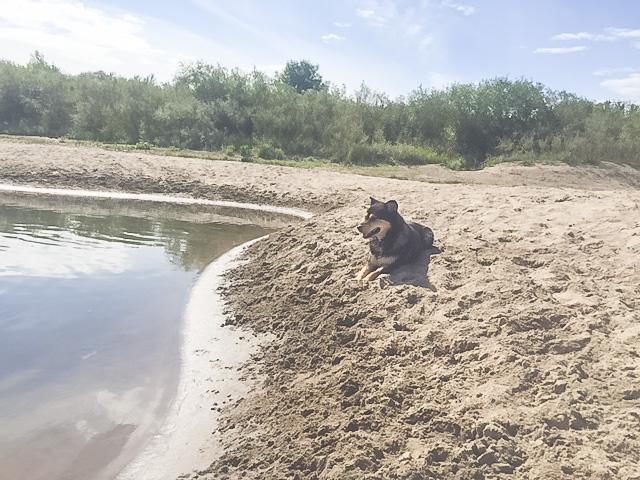 Lib chillaxin on the beach