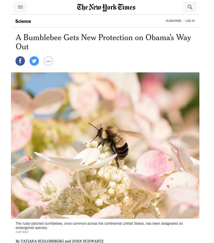 New York Times, January 10, 2017