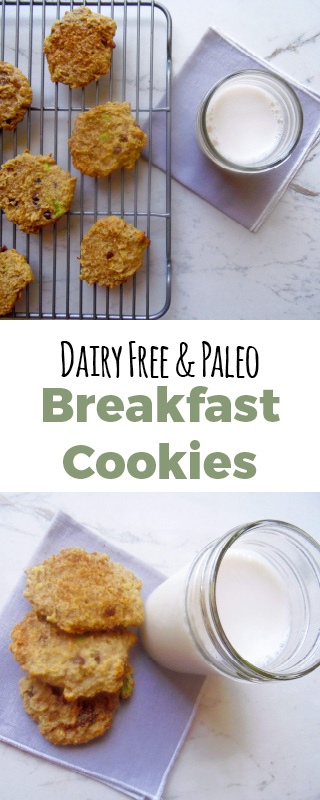 Breakfast cookies that are dairy free, gluten free and paleo. Full are the healthy ingredients needed for a great day! #breakfastcookies #paleocookies