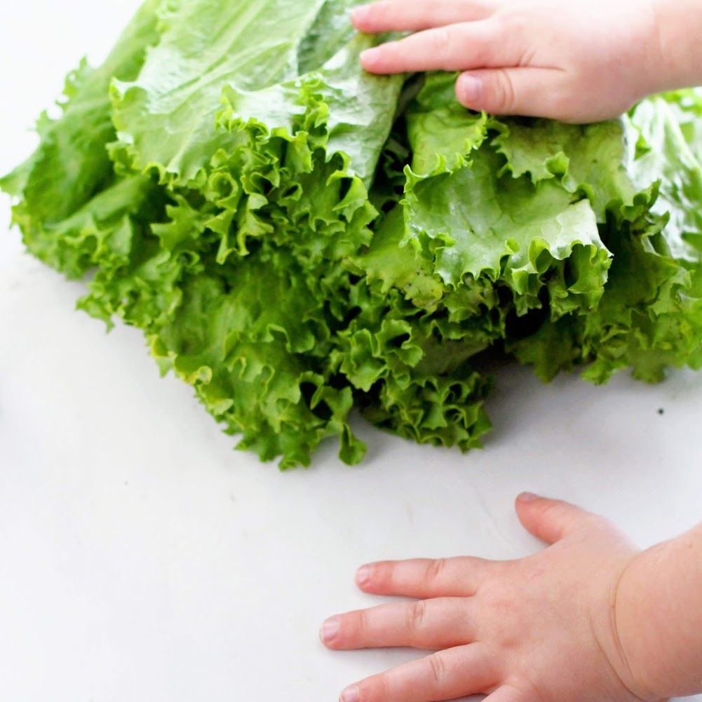 why do your kids need vegetables.