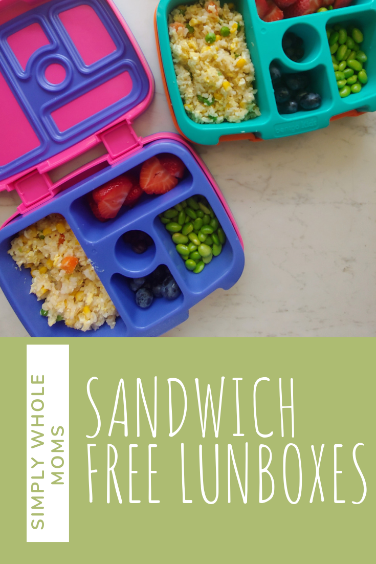 Healthy lunchbox ideas my kids will love. Good ideas for simple and different lunches for kids.