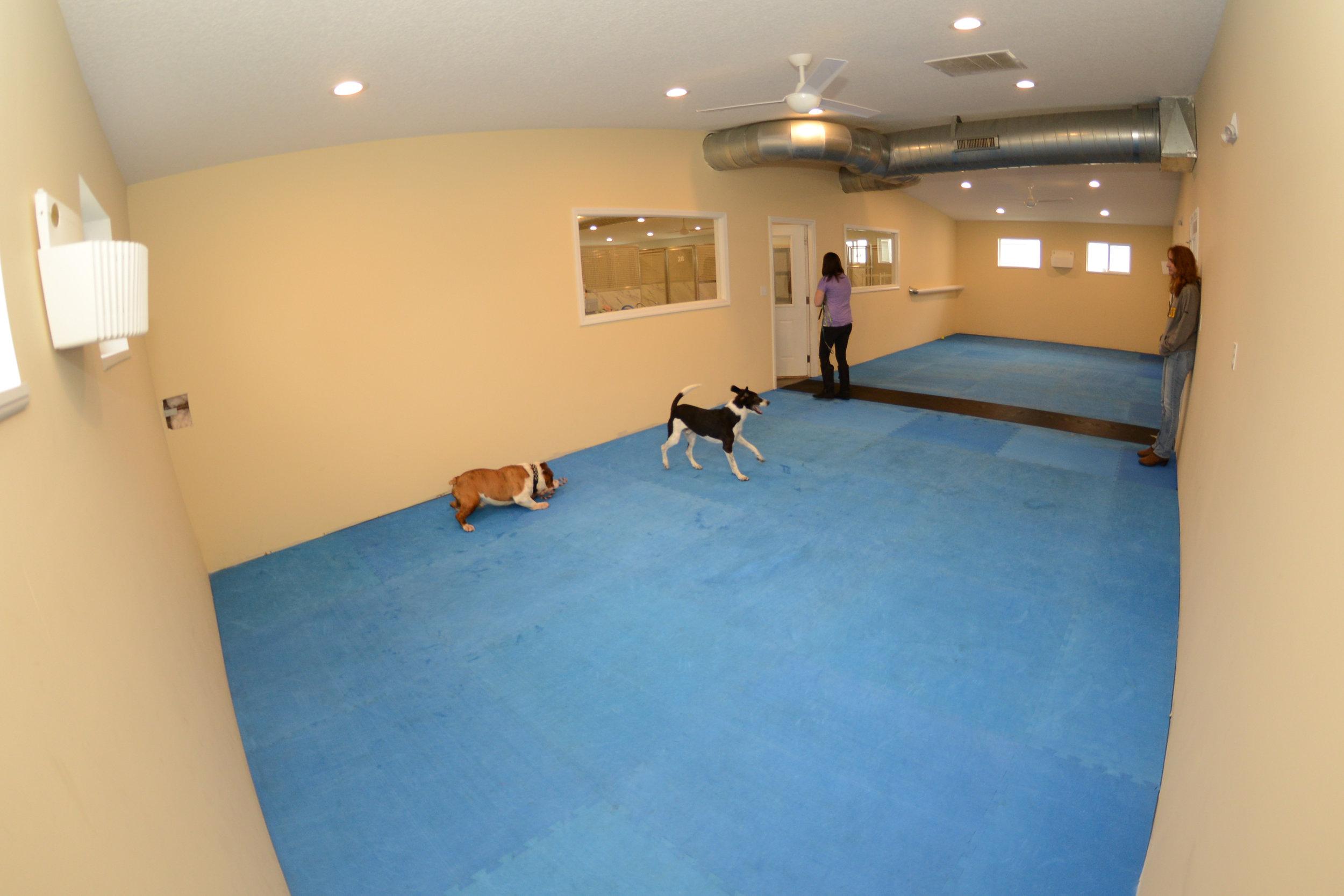 indoor playroom.jpg