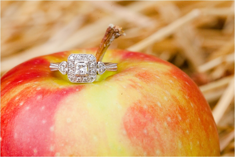 deborah zoe photography brooksby farm fall engagement session apple orchard rustic details new england wedding 0045.JPG