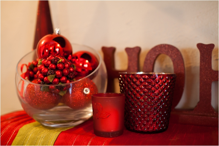 deborah zoe photography christmas decor0003.JPG