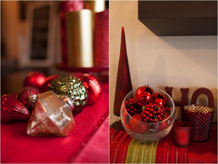 deborah zoe photography christmas decor0005.JPG