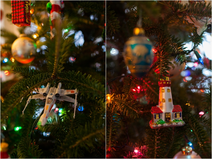 deborah zoe photography christmas decor0009.JPG