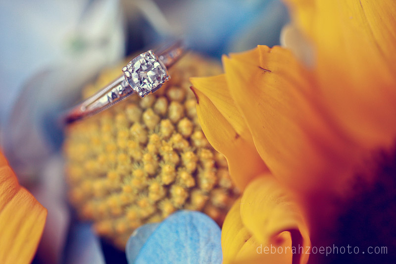 Maine-Wedding-Photography-Maine-Wedding-Ogunquit-Wedding-York-Wedding-DIY-Wedding-Sunflower-Wedding-Details-Deborah-Zoe-Photo008