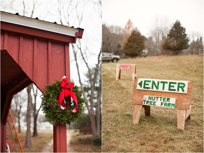 nutter christmas tree farm deborah zoe photography deborah zoe blog boston wedding photographer0002.JPG