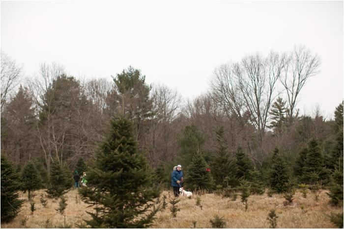 nutter christmas tree farm deborah zoe photography deborah zoe blog boston wedding photographer0008.JPG